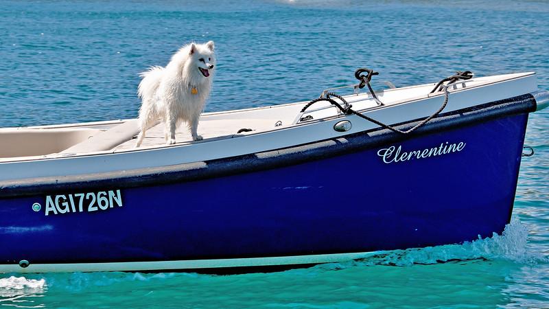Sailing Cruising Lifestyle, Australia.