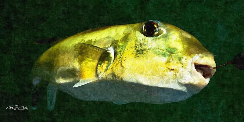Green Fish. Art Oil Painting Photo, digital download and wallpaper screensaver. DIY Print