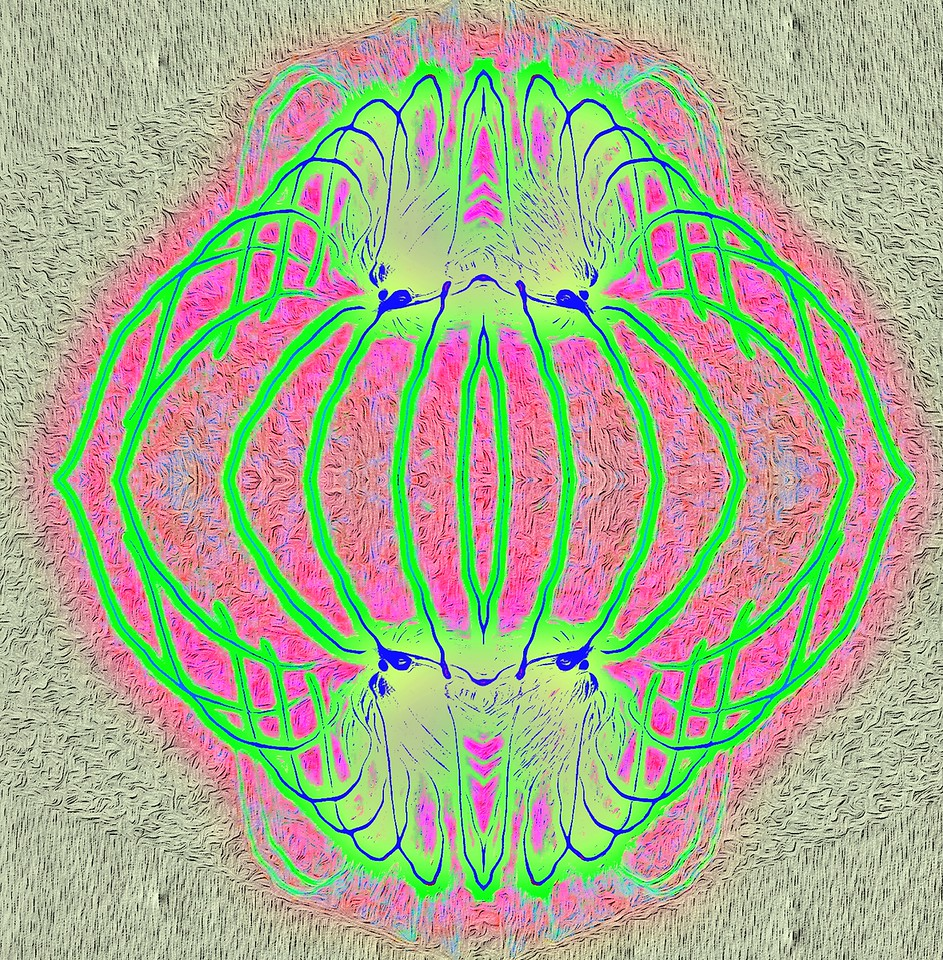 Double Surreal Green and Pink. Exclusive  Original stock Surreal and Abstract  Photo Art digital download.