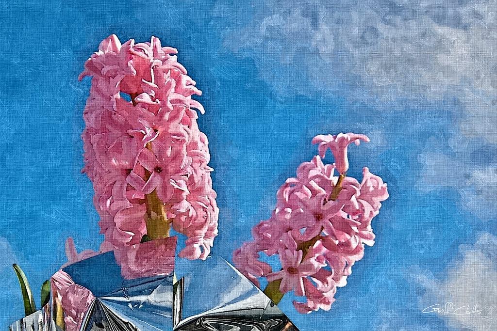 Beautiful pink Hyacinth flowers. Art Oil Painting Photo, digital download and wallpaper screensaver. DIY Print