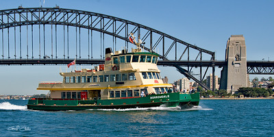 The BORROWDALE  Ferry on Sydney Harbour. Art photo digital download and wallpaper screensaver. DIY Print.
