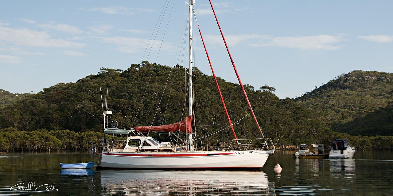 Yacht Obelia