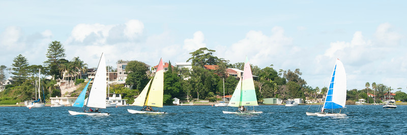 Children sailing racing small catamirans with colourful sails on coastal lake Macquarie. Commercial panoramic Image.