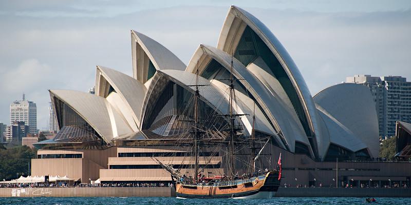 Sydney Opera House. Original Photo Art  digital download and wallpaper screensaver. DIY Print.