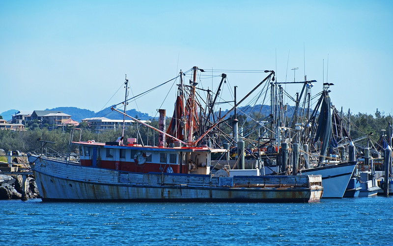 Shrimp boats. Nautical Marina scene.