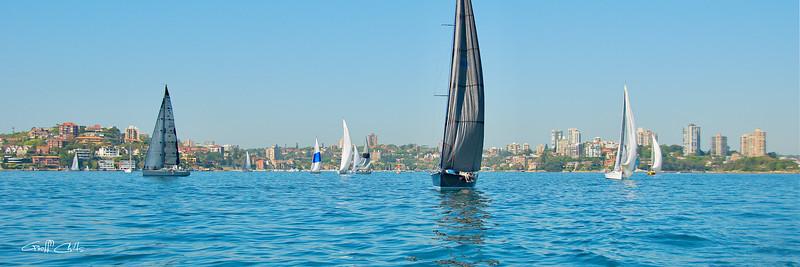 Sydney Harbour yacht race. Art photo digital download and wallpaper screensaver. DIY Print.