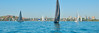 Sydney Harbour yacht race. Art photo digital download and wallpaper screensaver. DIY Print.