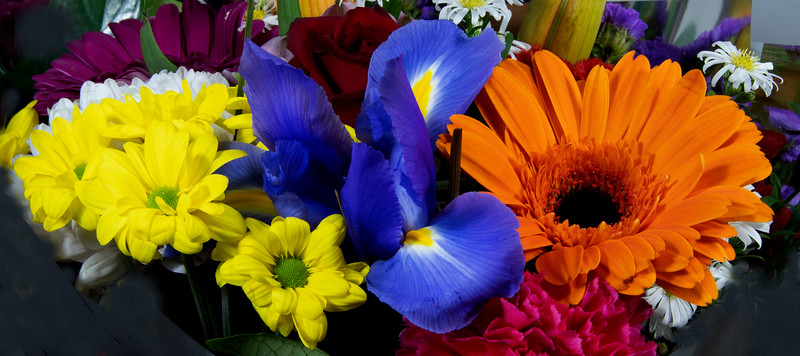Colourful bunch of mixed flowers closeup.