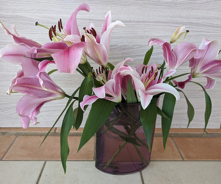 Floral display including Flashpoint pink and white Oriental Trumpet Lily in a transparent vase..