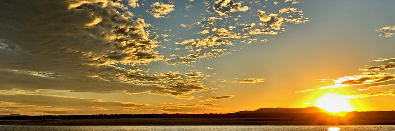 Gold Pepper Sunset.