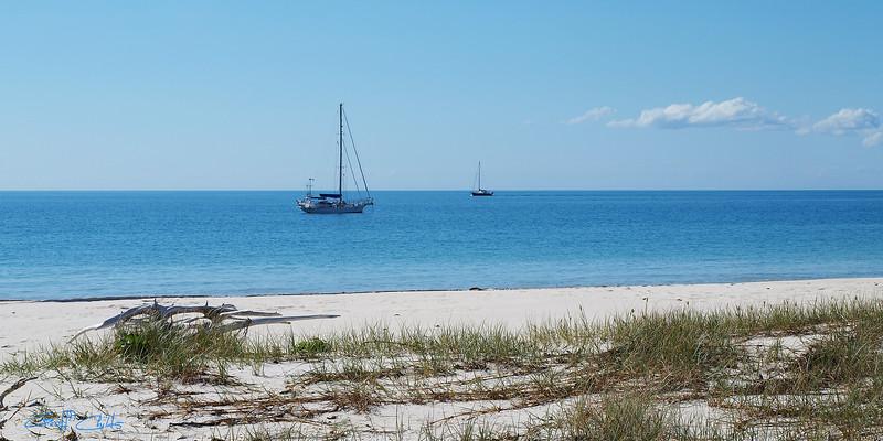 Frazer Island.