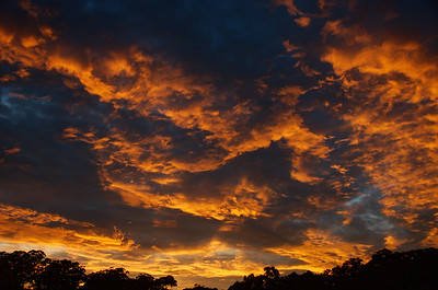 Dramatic orange coloured stratocumulus sunrise cloudscape.