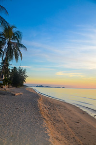 Tropical beach sunrise seascape with Palm trees, Thailand.