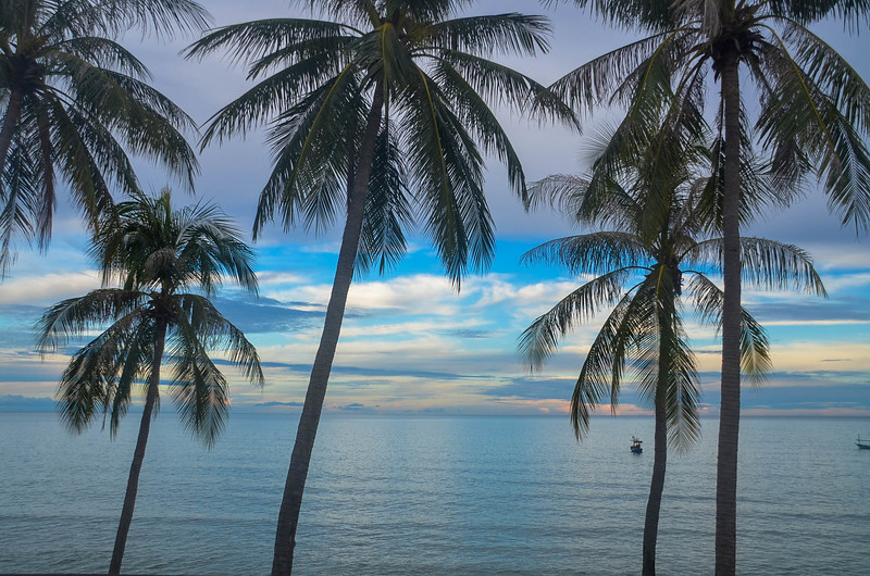 Picturesque tropical seascape with Palm trees, Thailand.