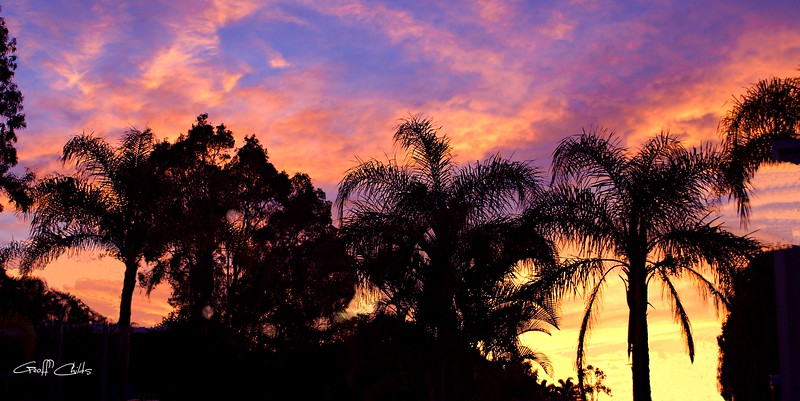 Tropical Sunrise Silheoutte. Art photo digital download and wallpaper screensaver. DIY Designer Print....XSDP3173.