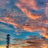 Lone Pine Sunrise... Exclusive Original stock Photo Art digital download. DIY Designer Print.