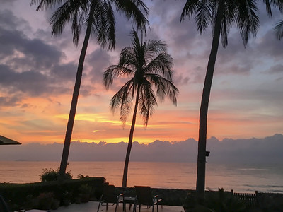 Tropical sunrise seascape with Palm trees, Thailand.