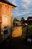 TractorDays_DSC7239