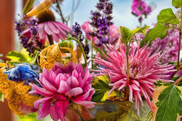 FloralFrill-DSC_6514