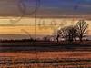 DecemberScape-DSC00954_