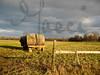 FieldWheels-IMG_4761