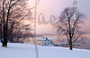 Rosy WInter Dawn-DSC_4150