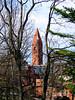 TowerTangle-IMG_1570 2