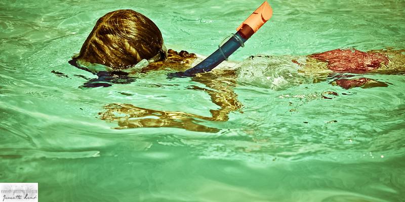 Summer Snorkel