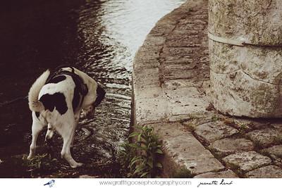 Lisle, France