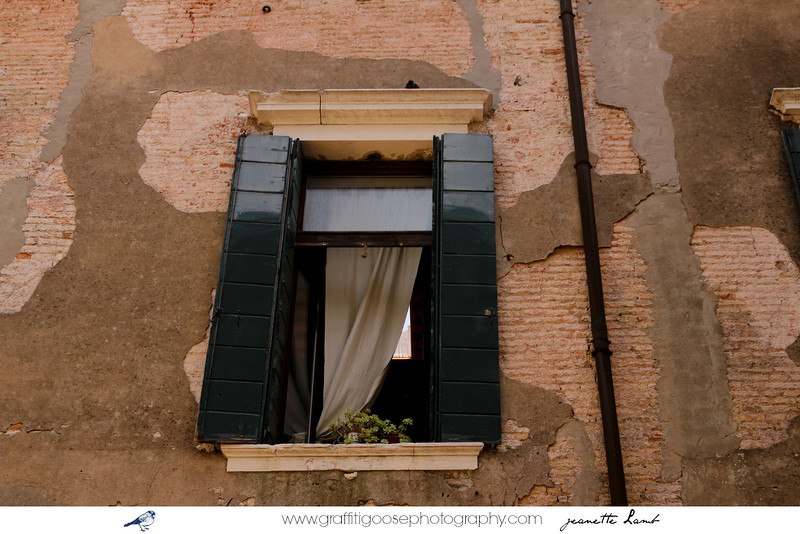 Venice, Italy, 2015, Jeanette Lamb, Graffiti Goose Photography