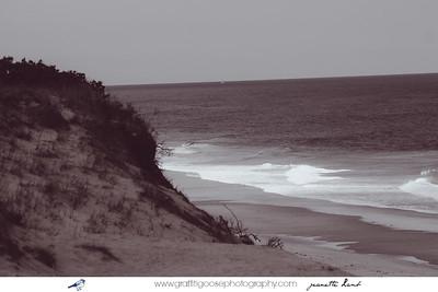 National Seashore, Cape Cod, MA, USA