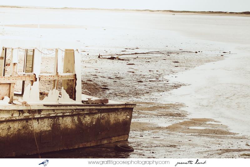 Cape Cod. MA (USA)