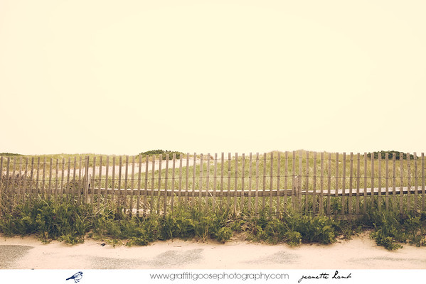 National Seashore, Cape Cod, M