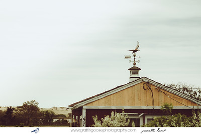 Cape Cod, MA,   Truro | Wellfleet