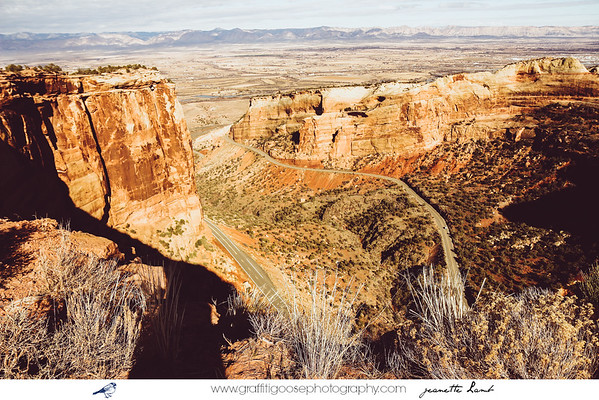 Colorado National Monument | 2015 | Jeanette Lamb | Graffiti Goose Photography