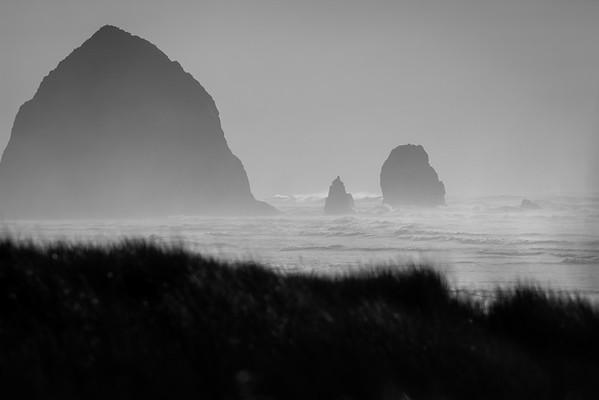 Oregon, USA, Jeanette Lamb, Graffiti Goose Photography,