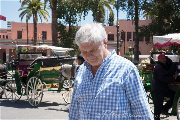 Marrakech. Steve + Horses = Tears