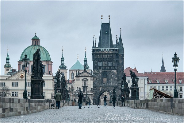 Prague - Charles Bridge at Dawn
