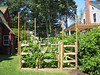Darien Historical Society/ Bates Scofield House, Childrens Colonial Garden