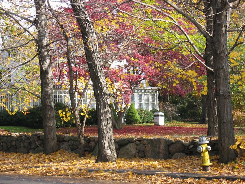 Middlesex and Hollow Tree Ridge Rd-235-NE corner-3