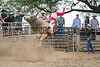 HONAUNAU STAMPEDE RODEO MARCH 16-17 2013 : 11 galleries with 367 photos