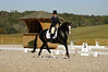 "Lellie	Ward	&	Peter Pan	197	CCI2* : Lellie, Thanks for the ""Disc"" purchase! For your convenience I also unlock your gallery here. Just wave the cursor over the image, then click on that folder icon with the green arrow, then follow instructions to save the original to your computer.