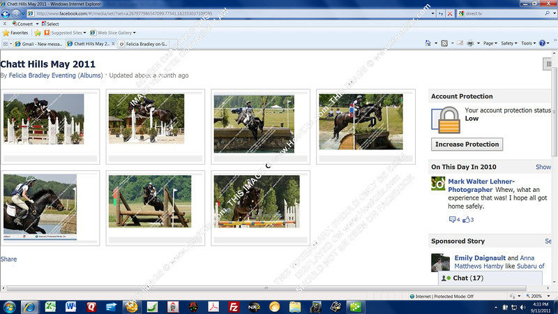 Series of images on Felicia Bradley Eventing that have been screen captured out of this very gallery!