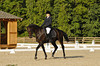Jennifer	Boggs	riding	Leo Davinci	#	98	# :