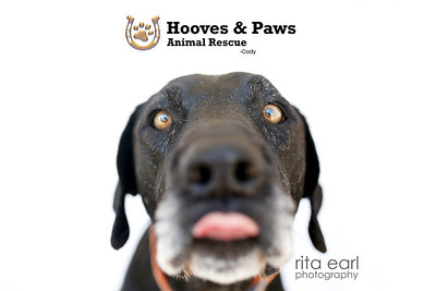 HOOVES & PAWS RESCUE  7-6-18