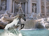 Sparky dreaming of cavorting around in the Trevi Fountain in Rome!