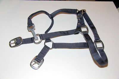 Blue nylon break-away halter -- Ieather headstall is included -- NEW -- for large horse -- $8.00