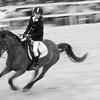 HORSES #004