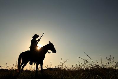 HORSES  - COWBOYS - RODEO