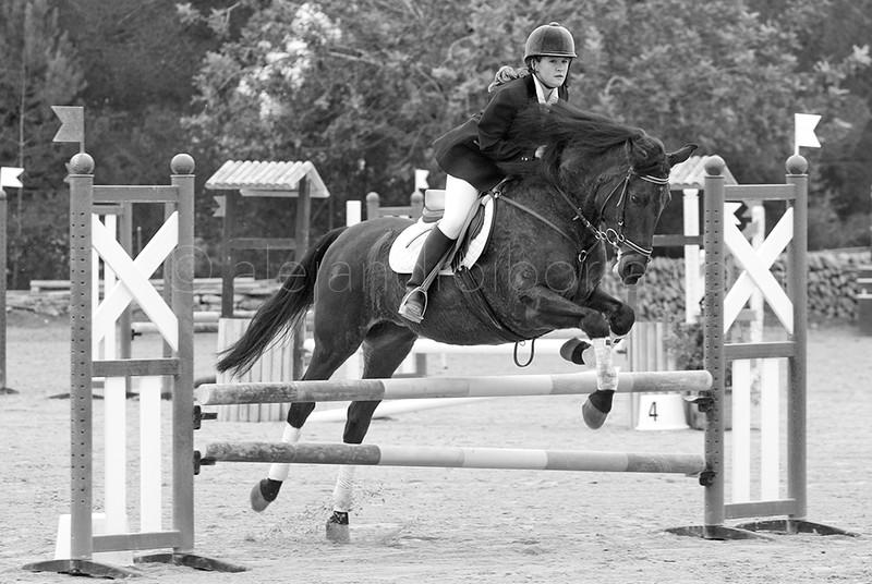 HORSES #002
